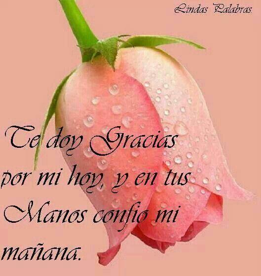 Te doy Gracias por mi hoy, y en tus manos confío mi mañana.