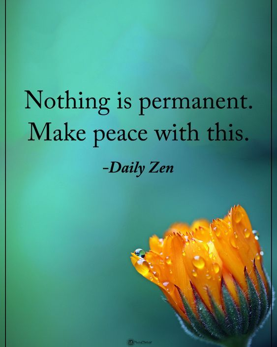 Choose to make peace with change...it is the one thing in life that is constant! Peace..joy and love to you all! #yoga #yogi #yogainspiration #yogagirl #yogaeverydamnday #yogalifestyle #namaste #zen #spiritual #yogajourney