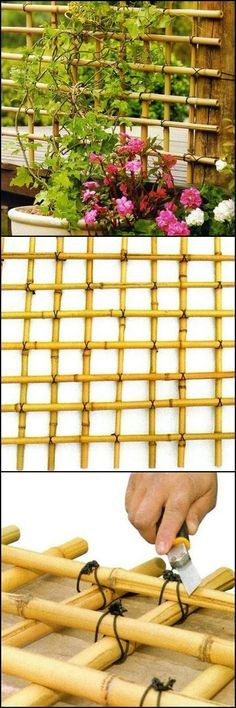 How To Build A Trellis From Bamboo  http://theownerbuildernetwork.co/qd5u  If there's a handmade trellis that perfectly fits any garden, this would be it. Why not make a trellis using bamboo!