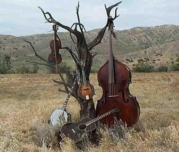 instruments for the rowdy psychobilly hoedown....also for a mellow bluegrass afternoon