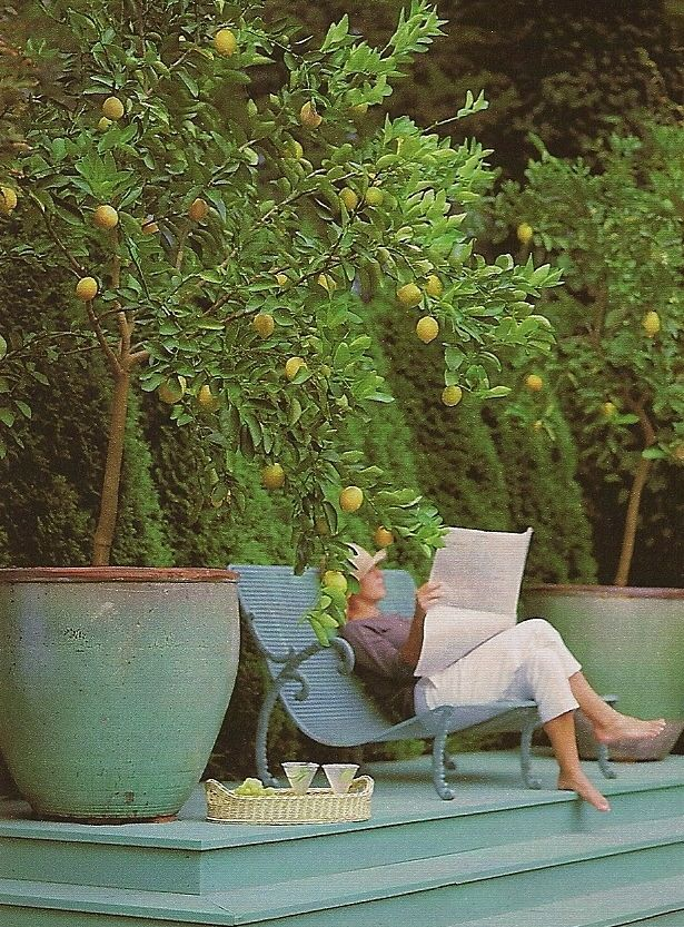 Reading the newspaper and sipping lemonade between the potted lemon trees. YES! Love the chair for two.