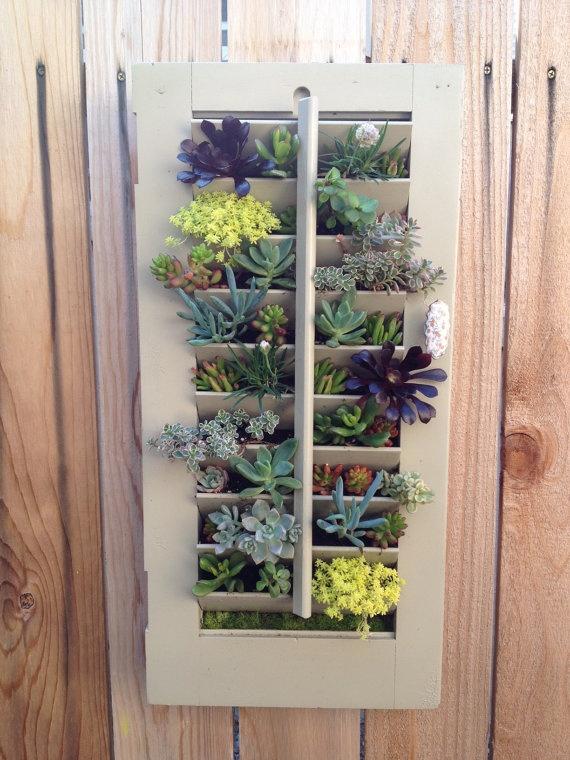 MOTHER'S DAY GIFT: Hanging Succulent Vertical Garden in Vintage Window Shutter