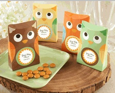 Whooos Happy Owl Favor Box Baby Favors, Owl Party Favors for Kids
