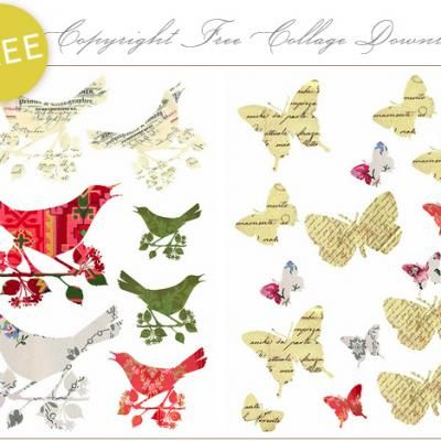 printable bird & butterfly images...cardmaking???