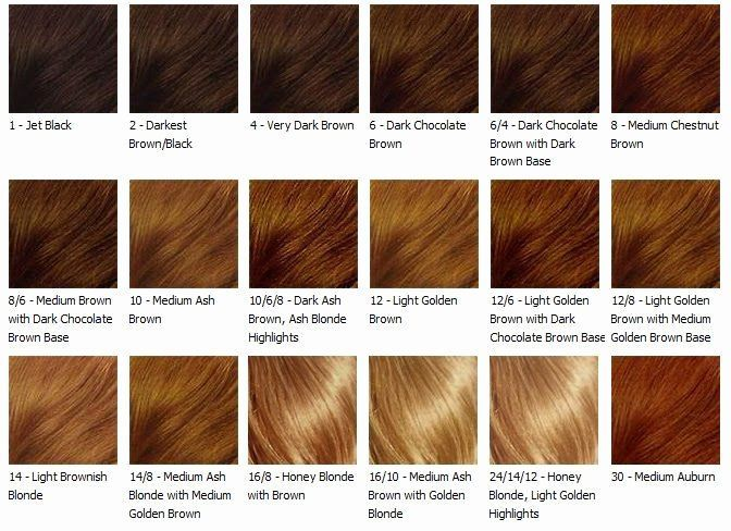 Ash Blonde Colour Chart Luxury Chocolate Caramel Hair Color