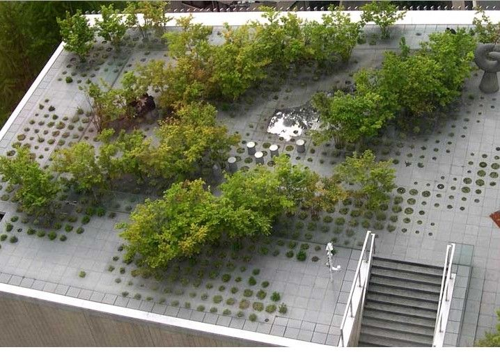 Interesting permeable pavment idea for courtyard.  Obviously we would change the pattern, but the round cutout planters could be cool  Keio University Roof Garden, Tokyo, Japan by Michel Desvigne