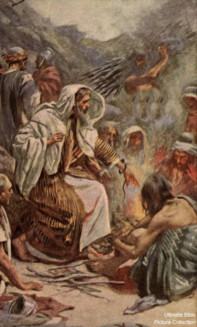 Acts 28 Bible Pictures: Paul with snake