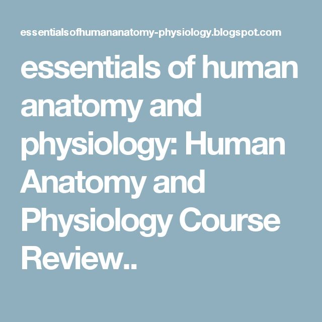 human physiology and health coursework Browse and read human physiology and health gcse complete course human physiology and health gcse complete course where you can find the human physiology and health gcse complete course easily.