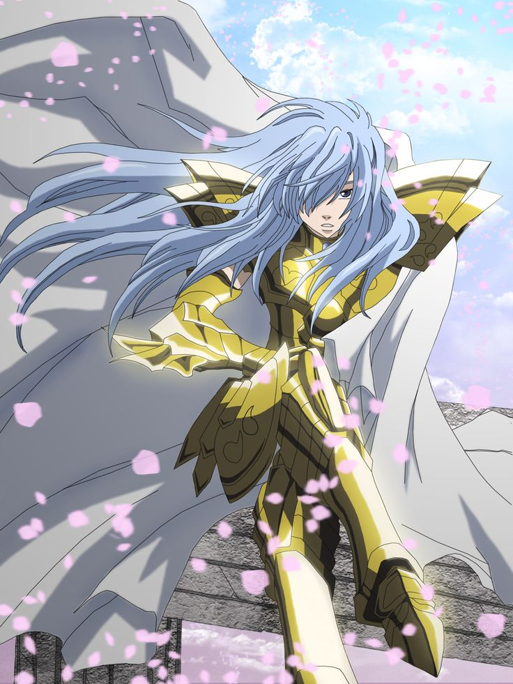 71 Best Saint Seiya The Lost Canvas Images On Pinterest