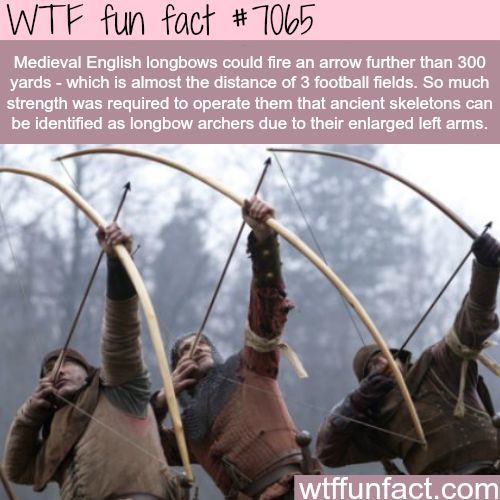 English Longbows - WTF fun facts
