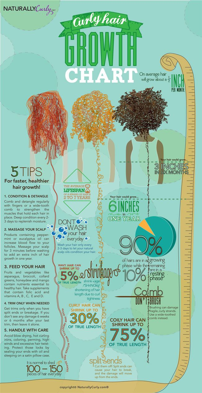 Curly Hair Growth Chart: How long can your hair grow in a year? Get some tidbits and tips about curly hair growth!