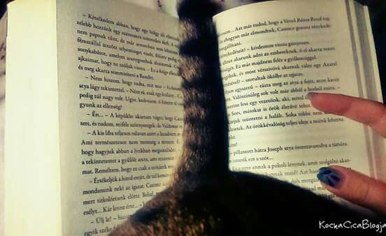 Cicó helps with reading... :D