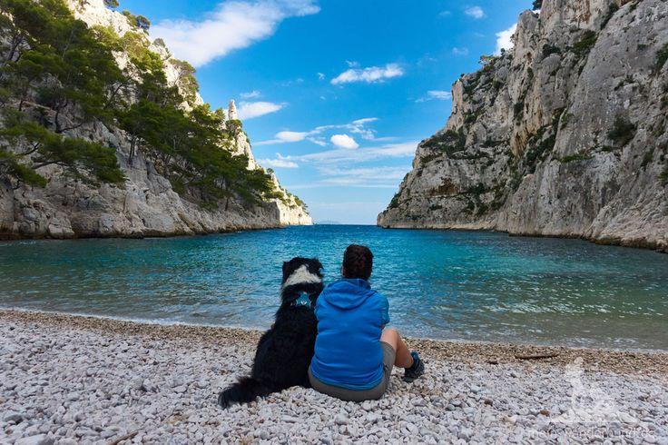 Südfrankreich und Urlaub mit Hund