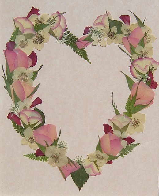 Pressed Flower Art More