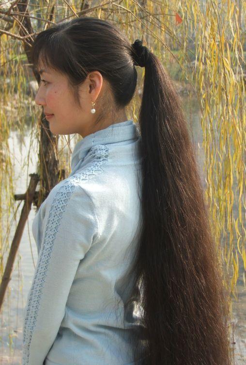 Oriental Long Hair Magnificent Very Long Hair