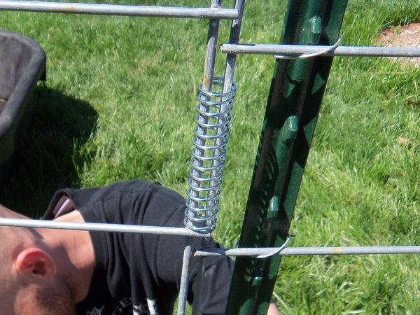 "We created our outer run using cattle panel and created a fence using a piece of it. Needed a way to connect the fencing that gave us the ability to open and close and still be secure and last.  I came up with adding a tension spring as the connector so the panels could ""hinge"" and stay upright."