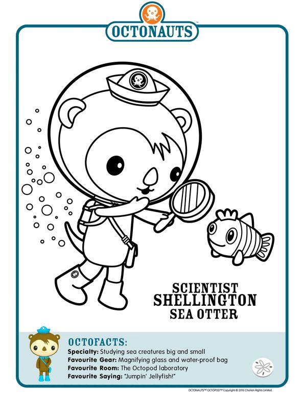 44 best octonauts images on Pinterest  Kid stuff Disney jr and
