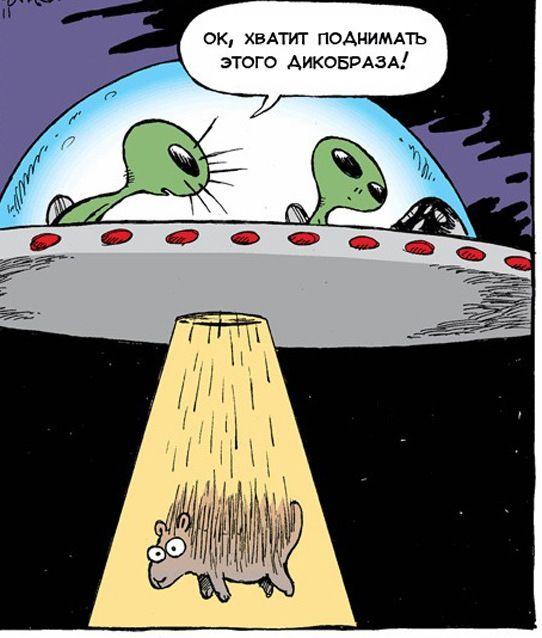 Смешные картинки с инопланетянами