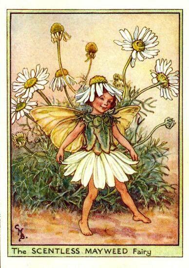 Sueños de niña: Cicely Mary Barker- more picture