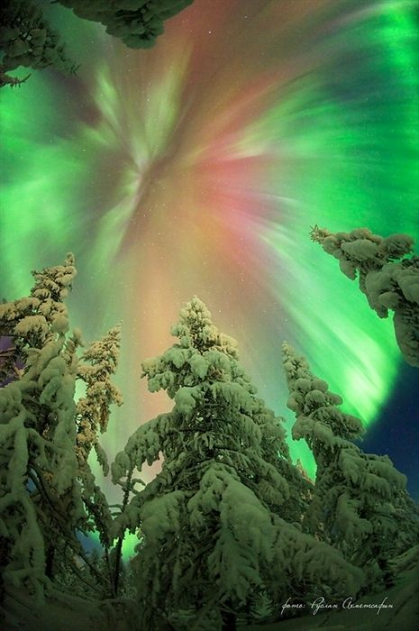 Northern Lights (siberia)  Ruslan Ahmetsafin photographer