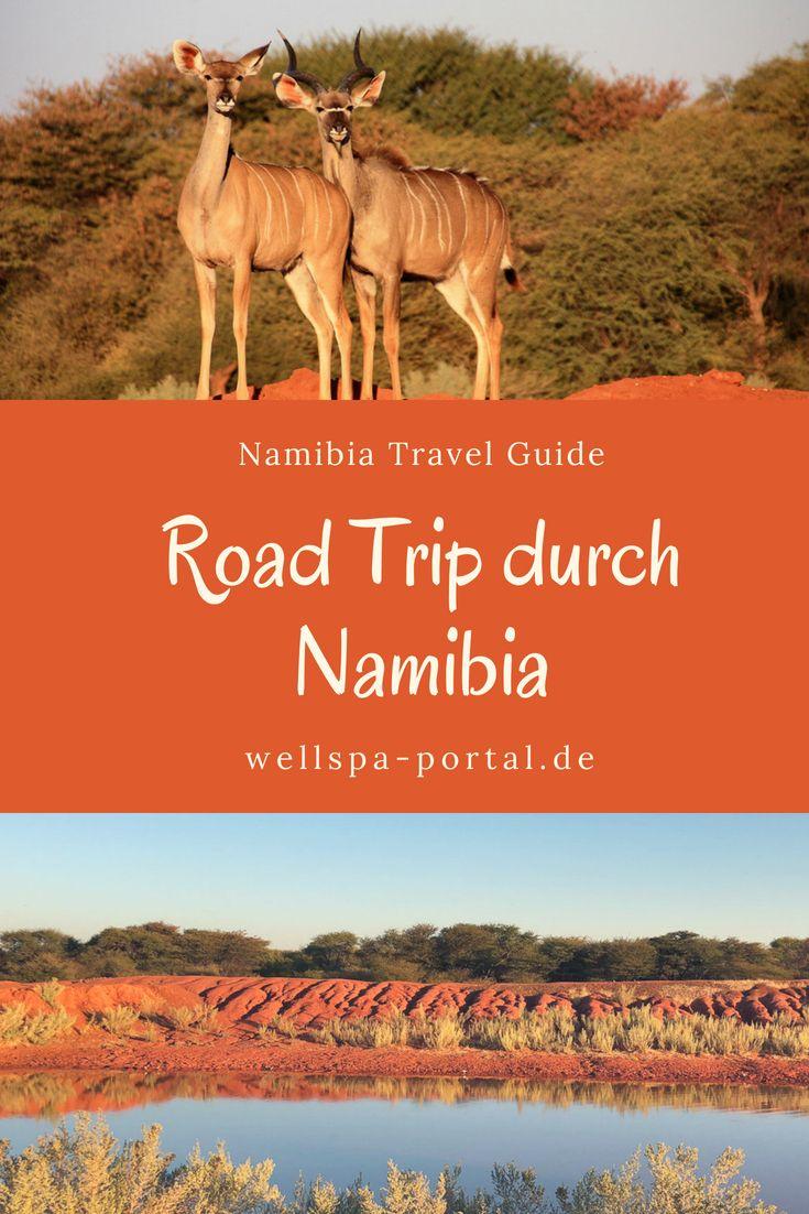 Faszinierendes Namibia Erfahrungen Einer Selbstfahrer Rundreise