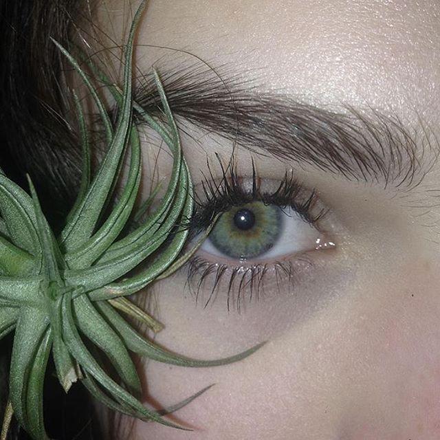 Pin By Jade Alexis On Makeup Eyes Eye Make Up Green Eyes
