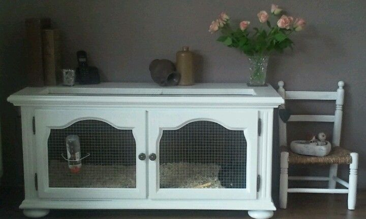 Great idea for disguised indoor guinea hutch... Just need to find old cabinet to repurpose!