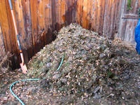 Composting For a Bountiful Garden!