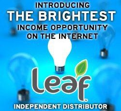 leaf international is still in its infancy those who get in early will reap the rewards greatly