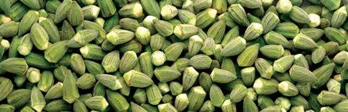 Seven Health Benefits Of Okra
