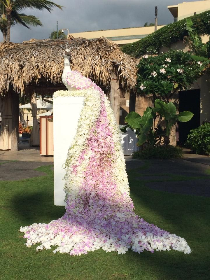 Want a dramatic entrance? How about having a 6 Foot Floral Peacock greet your guests! @fsmaui #fsbridal #wedding #mauiwedding #luxbride