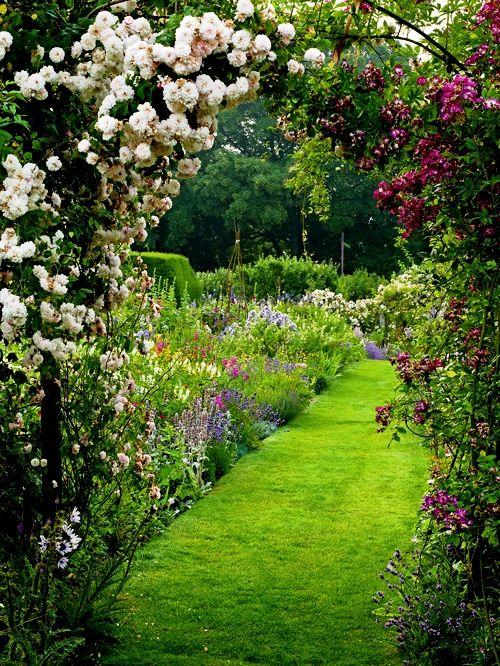 a magical garden...#JumpSportStaycation.