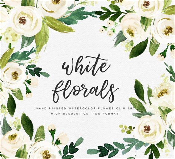 Watercolor Floral Clip Art White Flower Small Set Individual Png