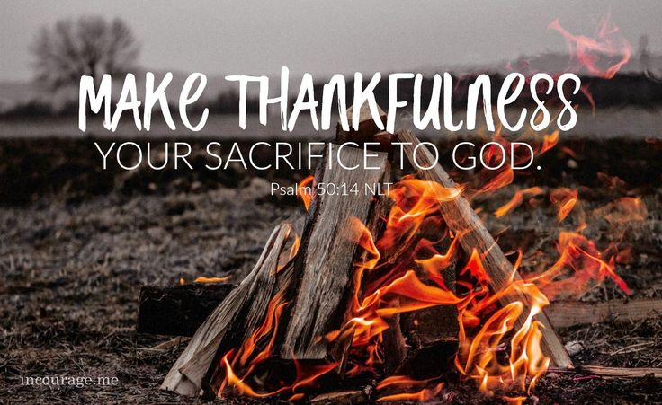 Make thankfulness your sacrifice to God, and keep the vows you made to the Most High. Then call on me when you are in trouble, and I will rescue you, and you will give me glory. Psalm 50:14-15 NLT