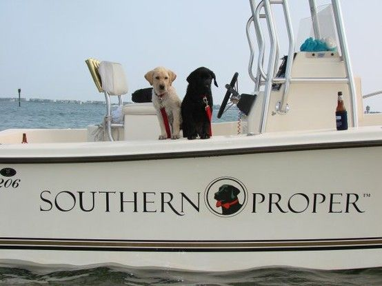 Puppies and boats: Southern Comforter, Southern Things, Southern Charms, Southern Proper, Classic Prep, Families Dogs, Southern Prep, Labs Puppies, Cute Pup