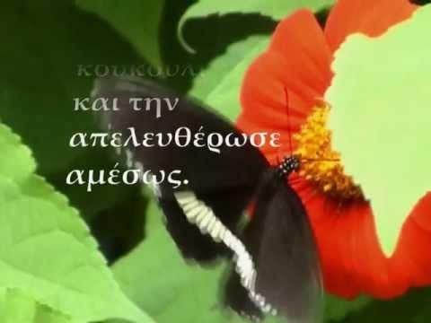 ''Το μάθημα της πεταλούδας''  Kαζαντζάκης