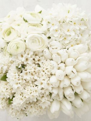 FRESH white flowers. Tulips, roses, white roses, white tulips, gardenia. Not just the fresh sweet scent of cut flowers, but again the colour white representing freshness for me.