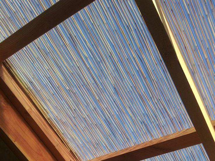 Techo de policarbonato con aplicacion de bambu for Techos de terrazas
