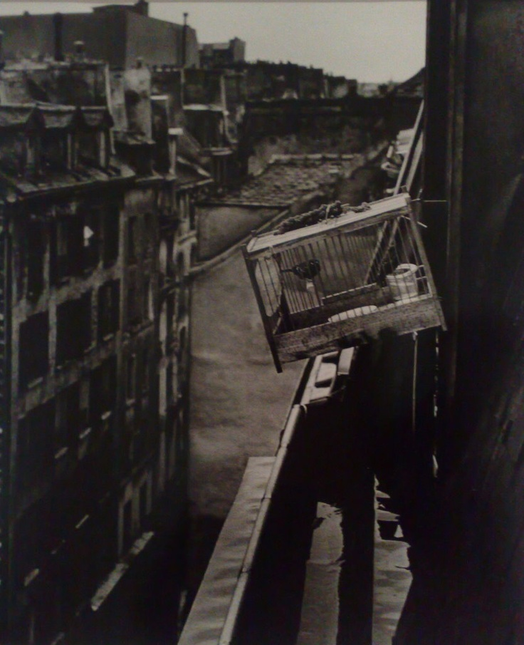 Izis Bidermanas / Rue Greneta, Paris, 1954