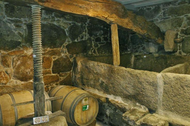Winery visit & tasting @ Bodega Pazo de Señorans, Rias Baixas, Galicia. www.eatourspecialist.com with @eatour #albarino #wines #food #wine #tours #riasbaixas #galicia #spain