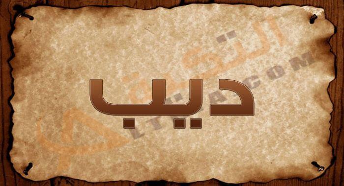 معنى اسم ديب وصفات حامل الاسم اختيار اسم المولود إحدى القرارات الهامة التي يتخذها الأب والأم في حياتهم فمنذ معرفتهم بقدوم Arabic Calligraphy Art Calligraphy