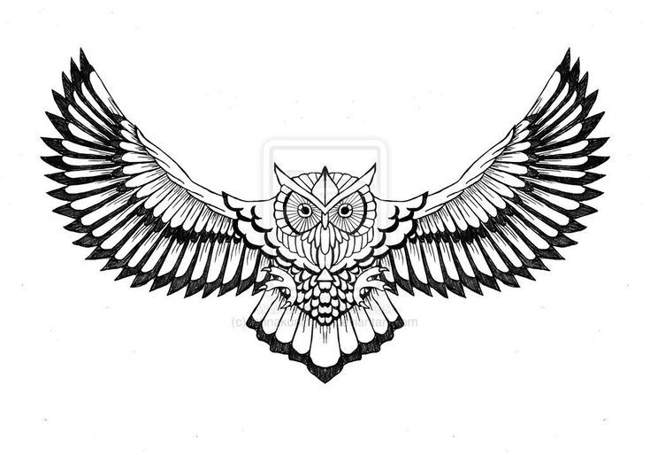 Flying owl tattoo-Suitable for chest and upper back area, the flying owl tattoo looks very striking. Description from pinterest.com. I searched for th…