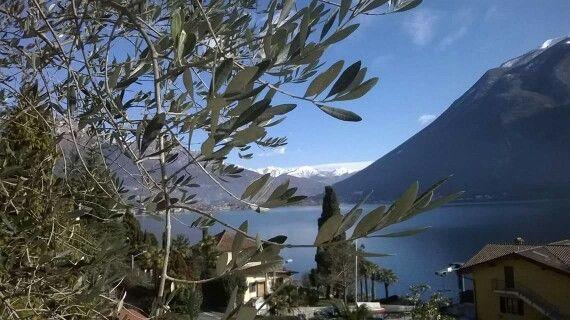 Gepinnt von Tanja Sippel: Parco San Marco...traumhaftes Hotel am Luganer See!  Immer wieder schön!