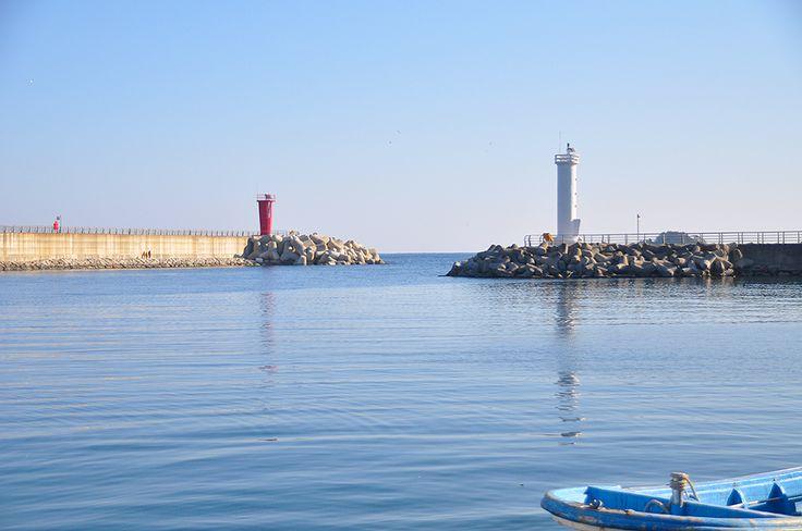 바다와 호수, 그리고 하늘이 만나는 곳 - 고성 화진포, 겨울바다 - | Special Journey sjzine #거진항