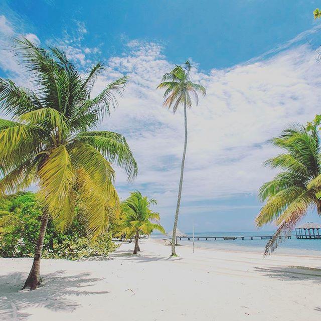 【privatebeach_hawaiian】さんのInstagramをピンしています。 《. . Happy Beach Life☀️ . 海好き ハワイ好き ビーチファッション大好き . 私達は海好きな人達が心ときめき一生共にできる結婚指輪を届けたいと思っています。 . ビーチを彩るすべてのモチーフを結婚指輪に落とし込んだ新感覚のリゾートブライダルリング。 . 「シンプルかつこだわり」両方を選ぶという新たな選択 . 海好き女性のための結婚指輪 private beach「プライベートビーチ」 . #夏 #海 #サーフ #ハワジュ #ハワイアンジュエリー #リゾ婚 #ビーチライフ #ビーチファッション #プライベートビーチ #ハワイアンジュエリー結婚指輪 #結婚指輪 #婚約指輪 #結婚指輪探し #マリッジリング探し #2017春婚 #2017夏婚 #2017秋婚 #2018冬婚 #デート #記念日 #カップル #ペアリング #ロンハーマン #表参道 #梅田 #心斎橋 #広島 #天神 #高崎 #新潟》