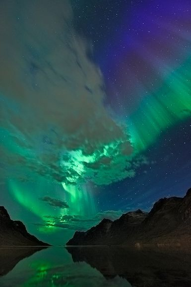 Northern lights, or aurora borealis, stride across clouds above Ersfjord, Norway