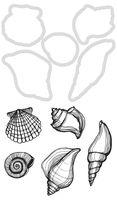 Decorative Die & Stamp Seashells