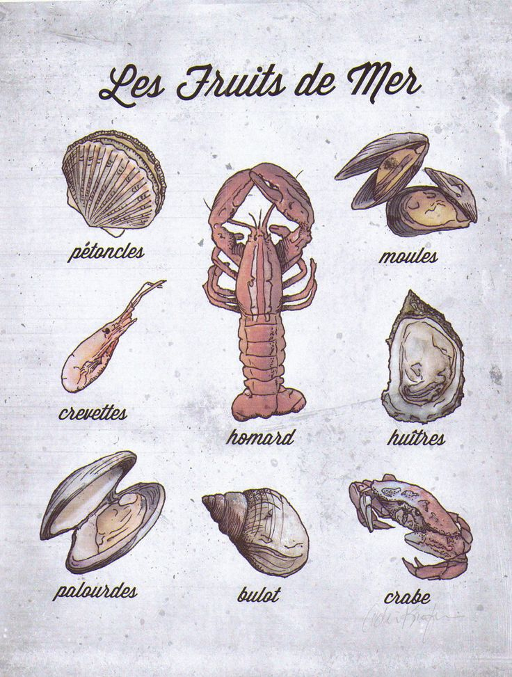 French Language Food Poster, Shell Fish, Les Fruits de Mer.