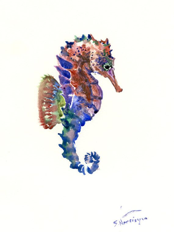 Cute Paper Wallpaper Seahorse Original Watercolor Painting 12 X 9 In Blue