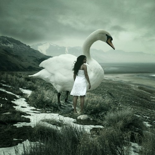 Giant Swan like in Tree Leaf Tornado Fighter